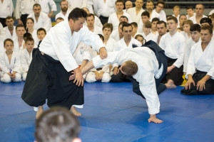 20150531_Aikido_seminar_131.jpg